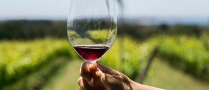 Far From Ordinary: An immersive Australian Wine Experience, Sept. 17-19